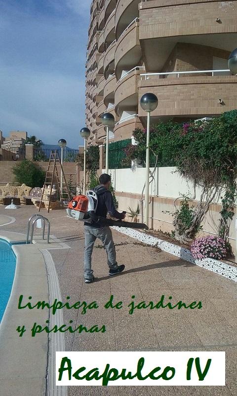 Limpieza jardines y piscinas norte y sur comunidad for Piscinas norte