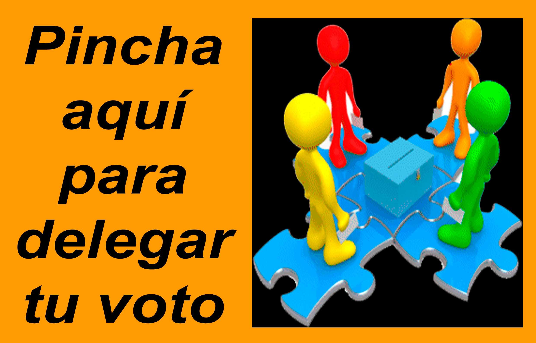 delegar-tu-voto